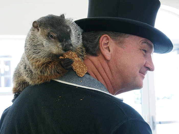 Punxsutawney Phil and John Griffiths Co-Handler